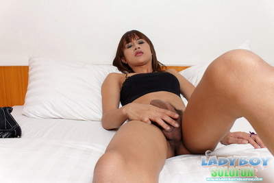 Ladyboy Solo Fun download